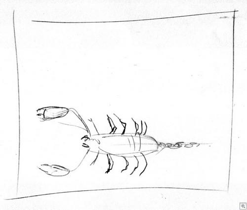 Schorpioen01